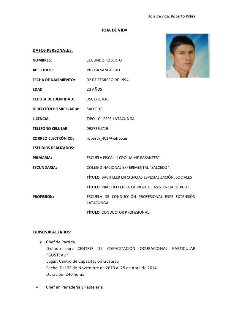 Excepcional Curriculum Vitae Para El Operador Del Propietario Del ...