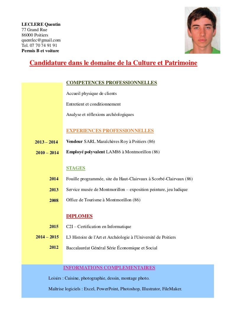 curriculum vitae culture et patrimoine