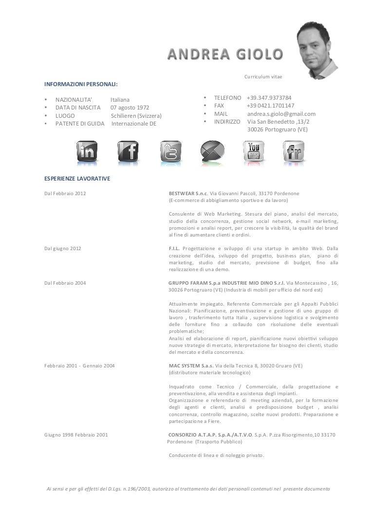 Curriculum Vitae Andrea Giolo