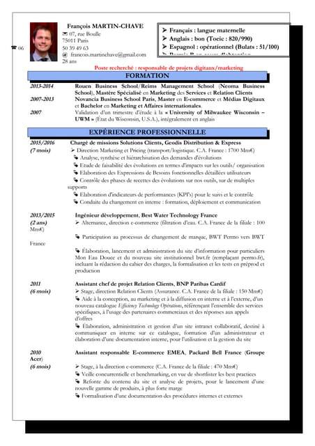 Curriculum vitae de François Martin-Chave