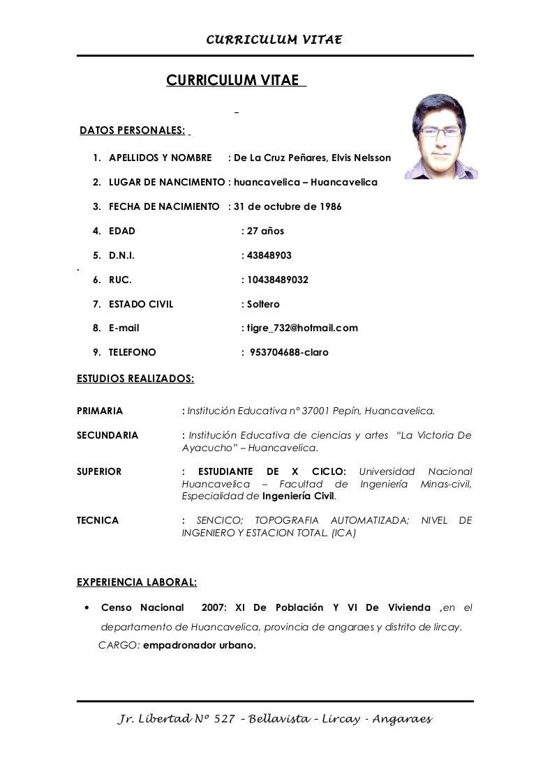 Curriculum Vitae Elvis