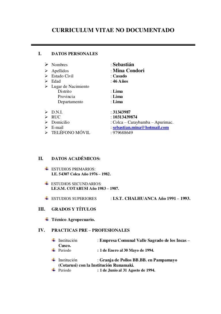 Curriculum Vitae No Documentado Sebastian 28062012 1
