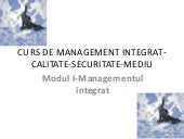 Curs de management integrat modul 1