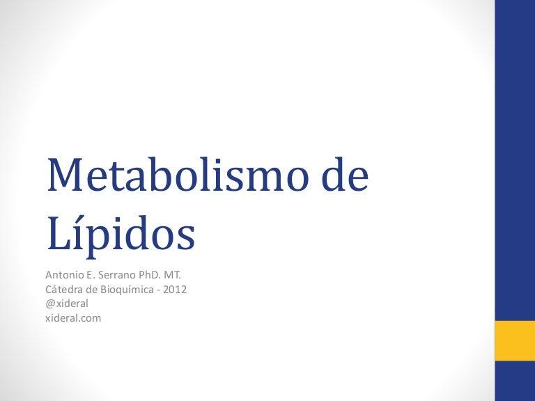 Curso Bioquímica 19-Metabolismo lípidos