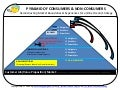 PYRAMID OF CONSUMERS AND NON-CONSUMERS