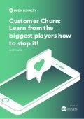 Customer churn - how to stop it?