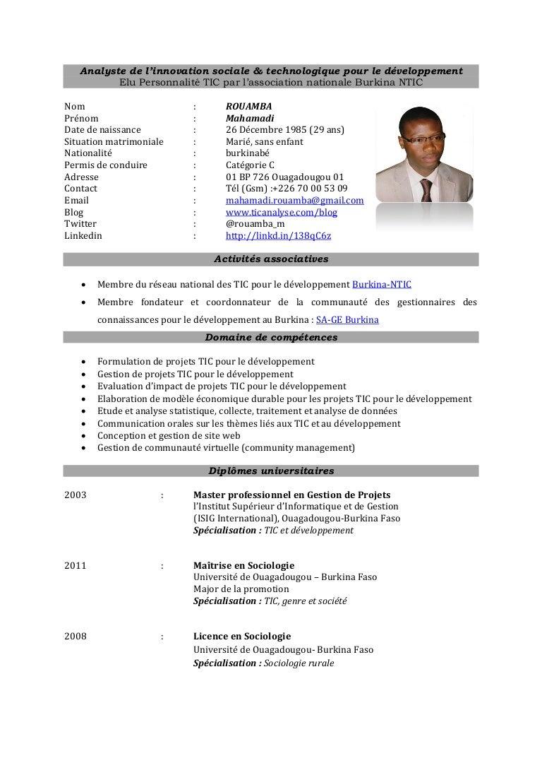 ict for development  ict4d  analyst cv