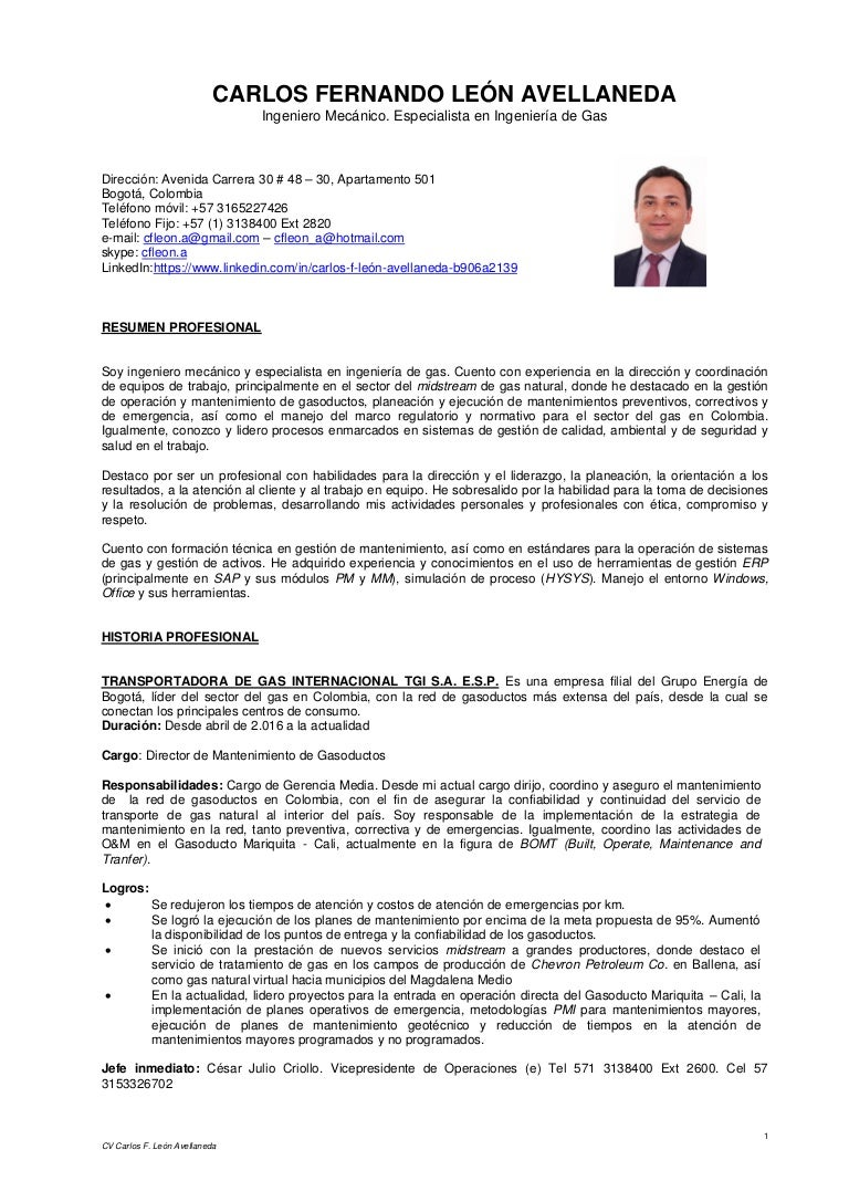 Único Curriculum Vitae De Mantenimiento De Apartamento Motivo ...
