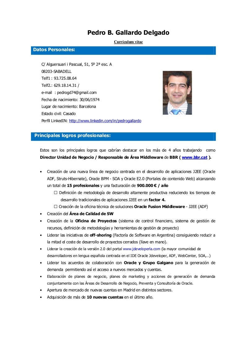 Excepcional Currículum Del Desarrollador De Software Neta ...
