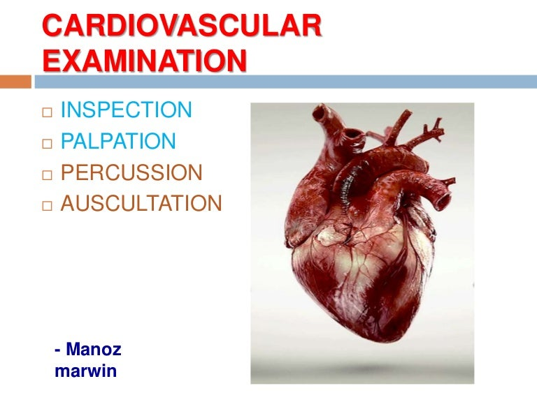 Percussion And Auscultation Of Cardiovascular System