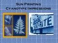 Cyanotype slideshow