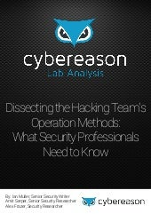 Networking 2016-05-24 - Topic 1- Cybereason Lab Analysis by Brad Green