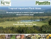 Tropical important plant areas: directing botanical research and conservation where it matters most