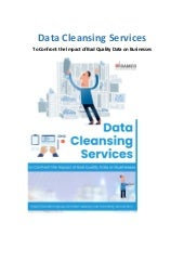 Data Cleansing Services to Confront the Impact of Bad Quality Data on Businesses
