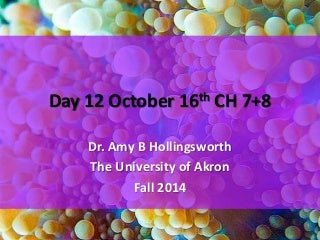 Day 12 october 16th ch 7+8