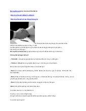 Dịch vụ thám tử truy tìm chủ sở hữu tài sản