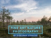 Deborah Strauss: Fine Art Nature Photography