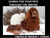 Deborah Y. Strauss, D.V.M: Caring For Your Pets Through The Winter