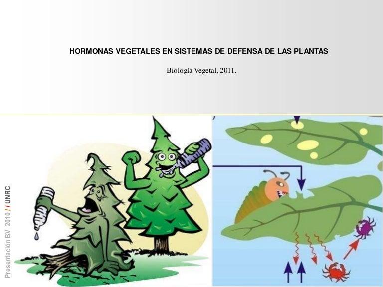 Elicitores En Plantas Pdf Download virtuale generale mkeil ennio p2ktools thunderbird