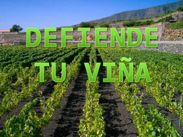 Defiende Tu Viña