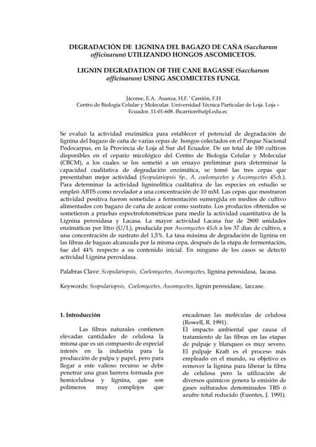 DegradacióN De Lignina Del Bagazo De CañA (Saccharum