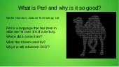 Slides showing history of Perl and why I can write perl as a People Per Hour Hourly for you