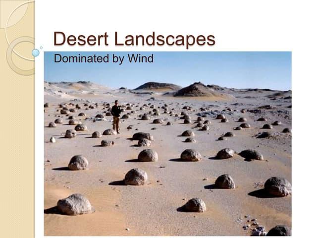 Desert landscapes dominated by wind