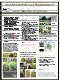 poster58: Development and implementation of methodologies for the production of clean, root rot tolerant avocado plants