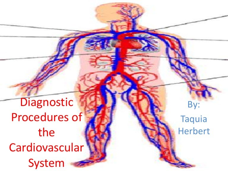 Diagnostic Procedures Of The Cardiovascular System