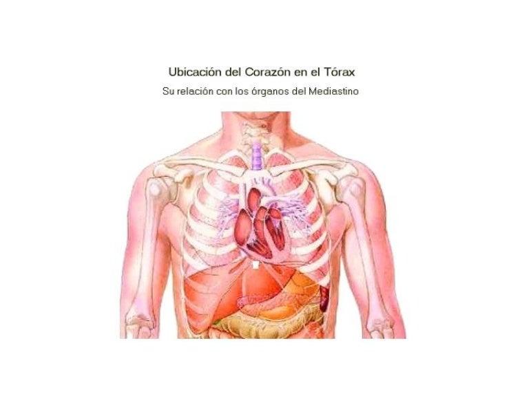 Diapositivas de corazon