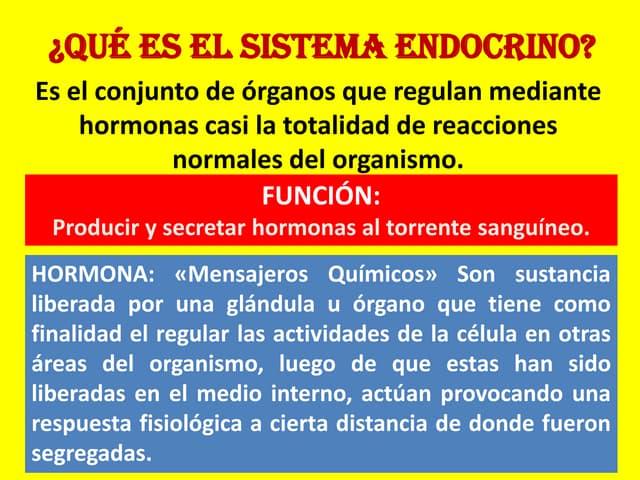 Diapositivas del sistema endocrino
