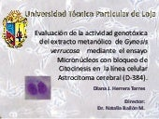 Diapositivas Para La Exposicion