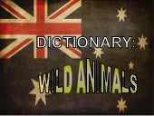 Dictionary wild animals [s. miralles][april 2012]