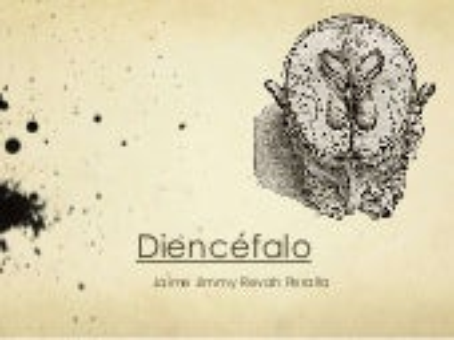 Neuroanatomía del Diencéfalo