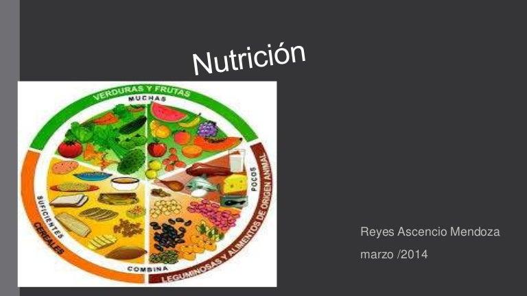 cual es la diferencia entre nutricion alimentacion y dieta