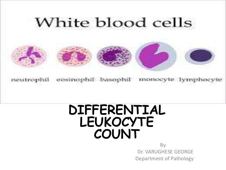 Differential leukocyte count