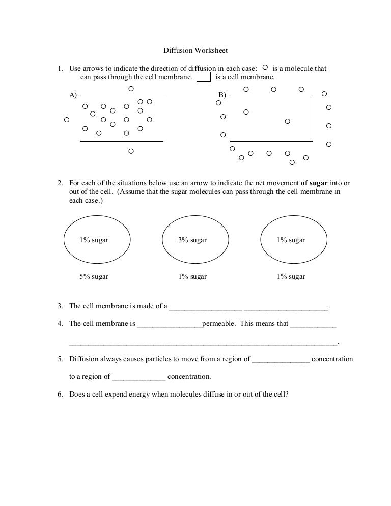 Diffusion and osmosis worksheet lab with infinite drawing life ...