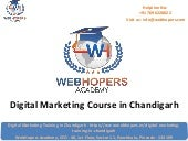 Digital Marketing Course in Chandigarh | WebHopers Academy