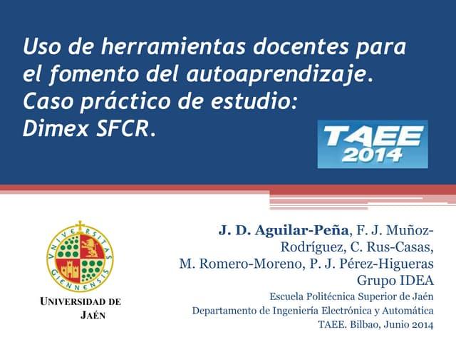Dimex SFCR