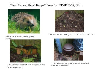 Dinah Parums. 'Grand Designs' Homes for Hedgehogs 2013.