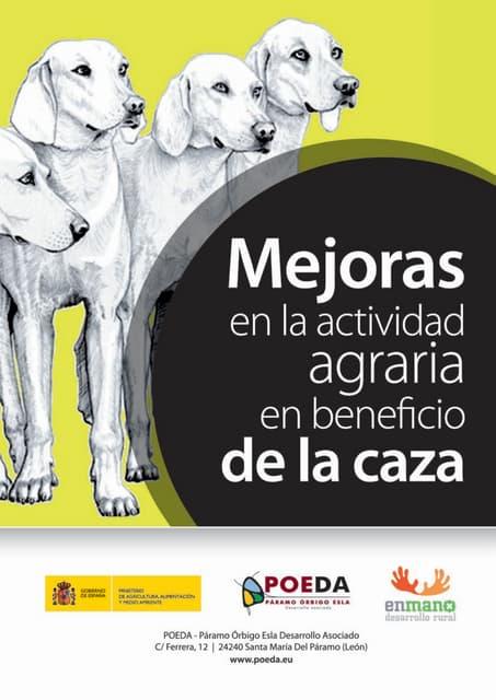 Diptico Caza 2013