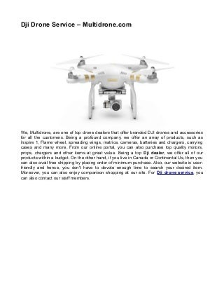 Dji drone service