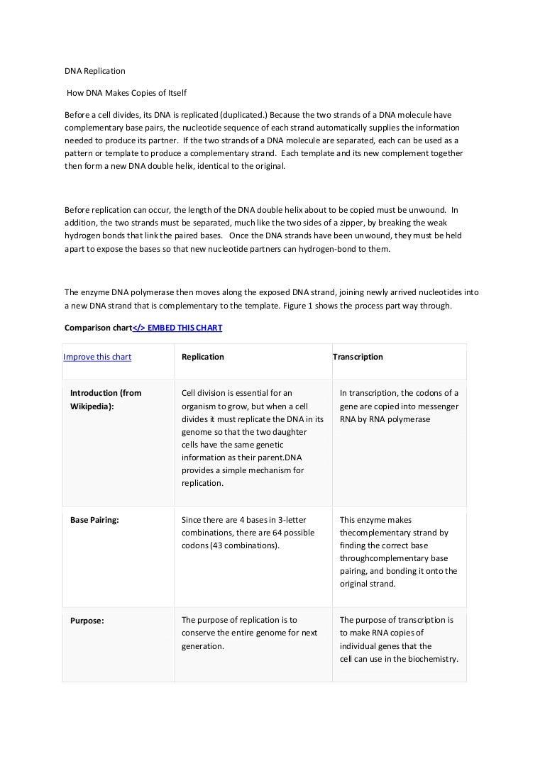 Worksheets Dna Double Helix Worksheet dna replication