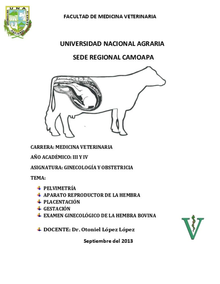 Ginecología Veterinaria