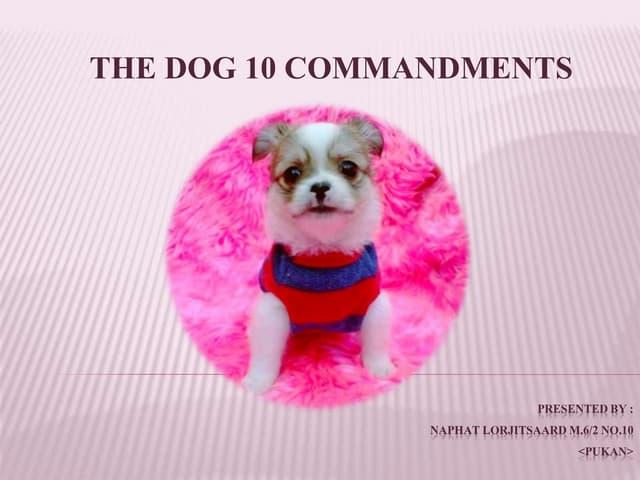 Dog 10 commandments