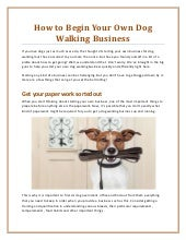 How To Begin Your Own Dog Walking Business