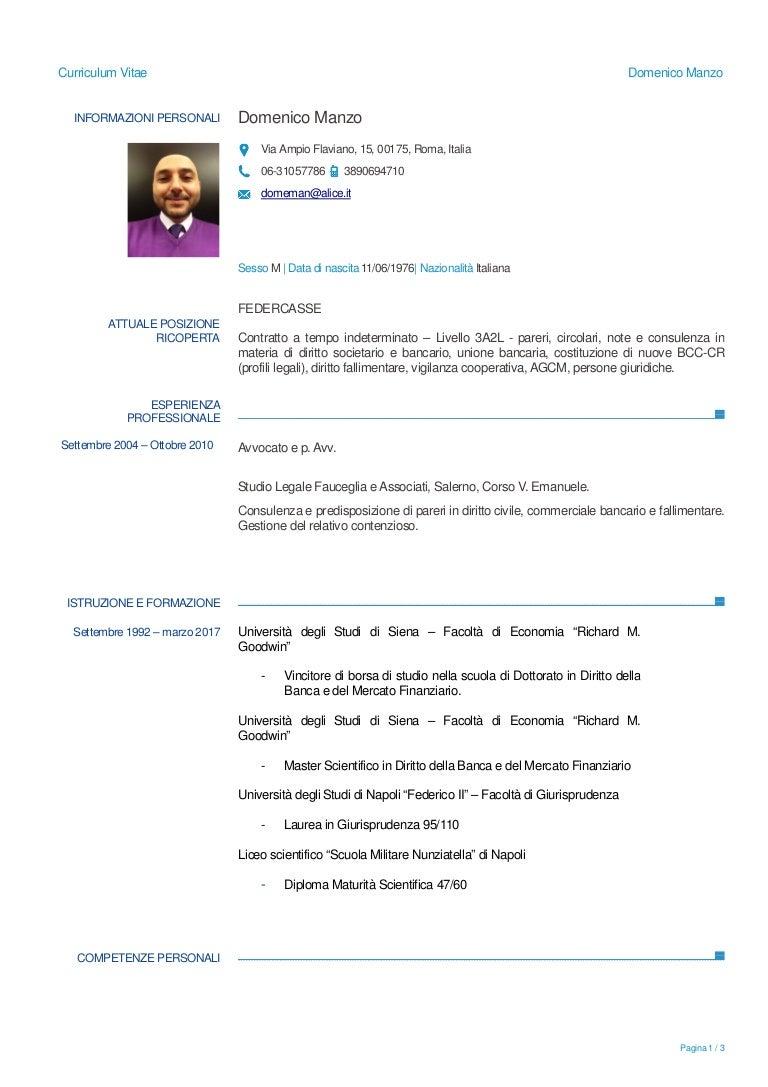 Domenico Manzo Cv 2017