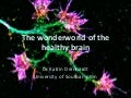 Dr. katrin deinhardt   home of memories and more – discovering the wonder world of the healthy brain - iw cafe scientifique