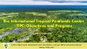 The International Tropical Peatlands Center (ITPC): Objectives and Progress
