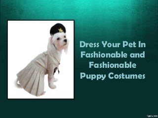 Dress Your Pet In Fashionable and Fashionable Puppy Costumes